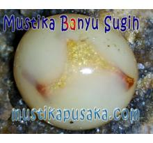 Raja Jin Emas Mustika Banyu Sugih
