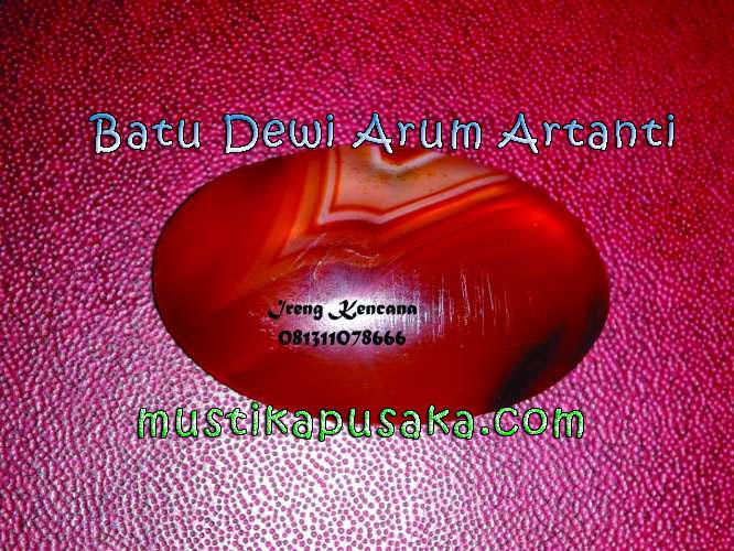 Arum artanti