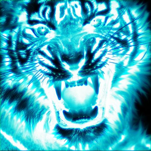 Khodam Harimau