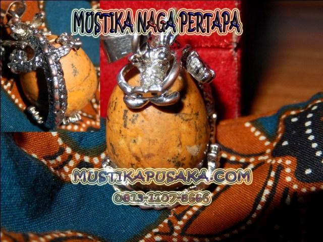 NAGA PERTAPA