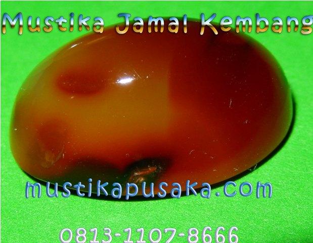 Mustika Jamal Kembang