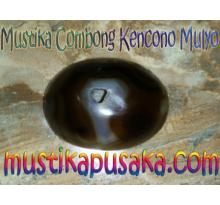 BATU BOLONG ALAMI ( Mustika Combong Kencono Mulyo )