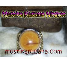 Mustika Kusuma Ningrat