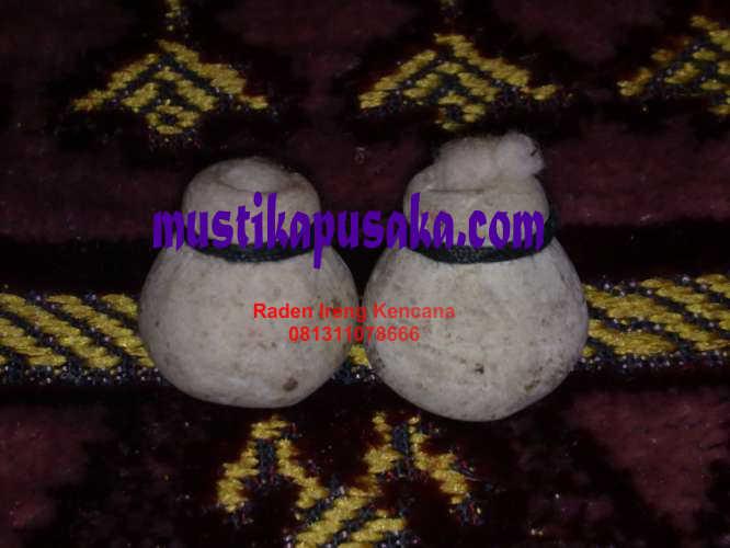 mustikabuli-buli