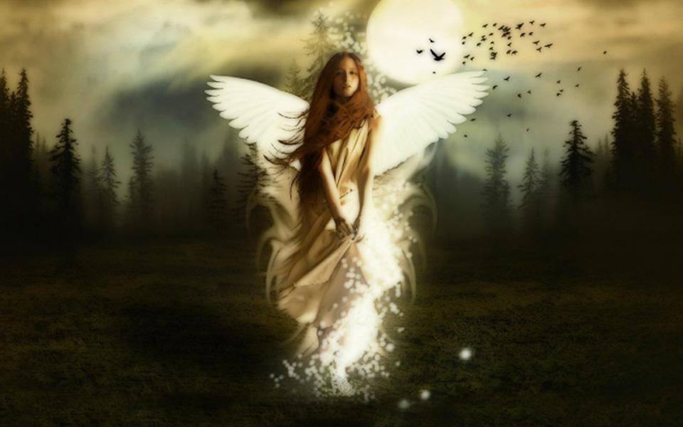 angel of guardian