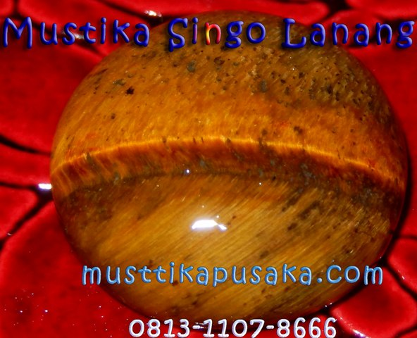 Singo Lanang