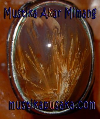 Mustika Akar